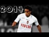 Radamel Falcao Goals 2013/14