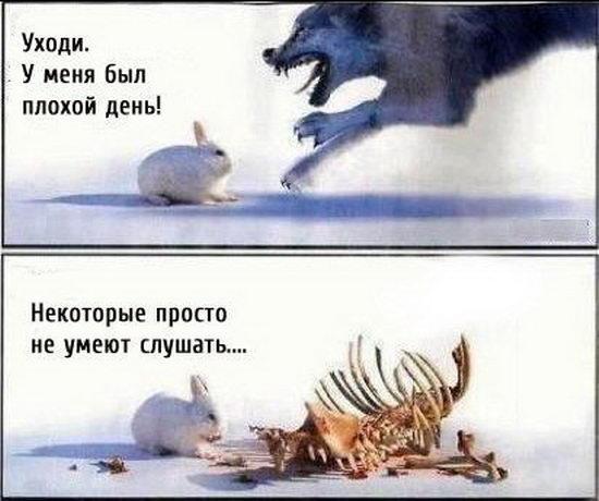 Я не собираюсь выходить из фракции БПП, чтобы вместо меня зашла очередная кума президента или смотрящий, - Лещенко - Цензор.НЕТ 5775