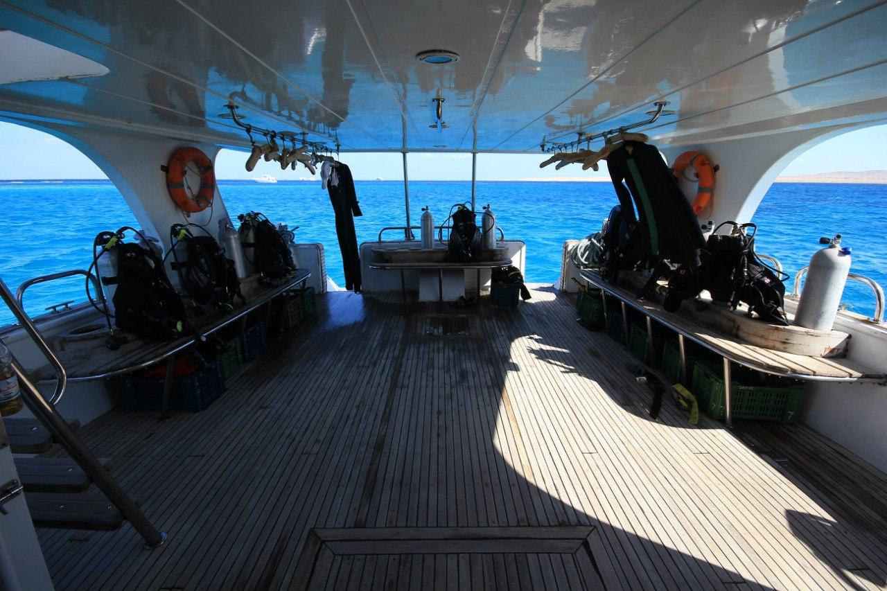 Open water diving HR5vHdj1iW4
