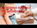 Юрист Киров ТОП вопросов по алиментам