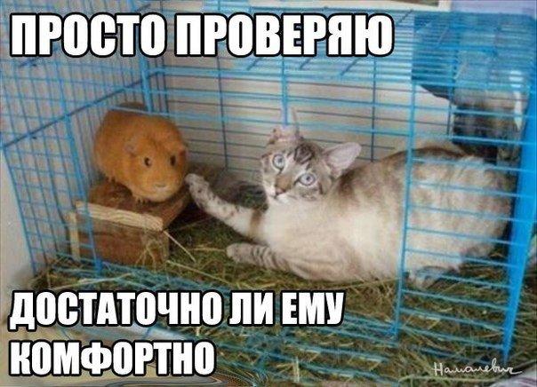 Всяко - разно 46 )))