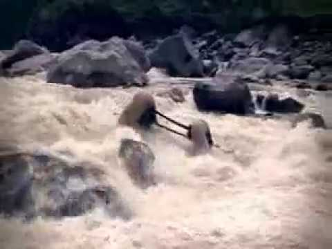 Сплав хохма - жесть. река Арун. Непал. Бублик каяк.