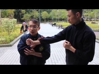 詠春過手技術分析講解/Wing chun hong kong applications and guide