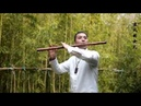 《The Girl Who Chases the Wind》Chinese bamboo flute music Player: Han Leilei《追风的女儿》 竹笛演奏:韩磊磊