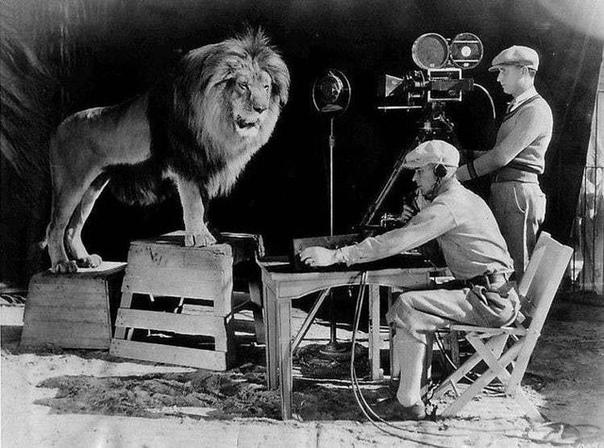 Фото процесса съёмки легендарной заставки со львом Metro-Goldwyn-Mayer
