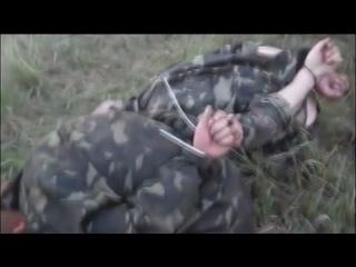 Доберман,боец батальона Донбасс,поставил раком террористов