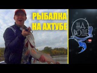 Рыбалка на Ахтубе осенью. щучий жор