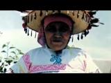 Рассказы из Джунглей Карлос Кастанеда  Тales from the Jungle Carlos Castaneda