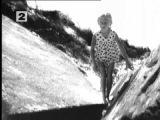 """""""Mirtis Ir Vyšnios Medis"""" - """"Смерть и вишнёвое дерево"""" (1968). Реж. Арунас Жебрюнас. В главной роли Инга Мицките - """"младшая сестра"""" Лины Бракните по кино :)."""