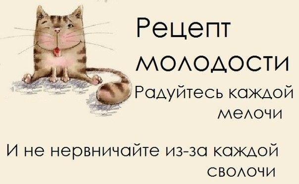http://cs403116.userapi.com/v403116892/476f/WuDbiTDnT1Q.jpg