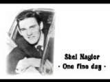 Shel Naylor - One Fine Day - 1964 45rpm