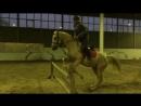 Шуана и Алан, прыжки с рыси