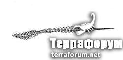 Reversopelma-petersi