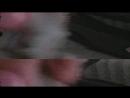 Video_2018_06_18_18_47_38.mp4