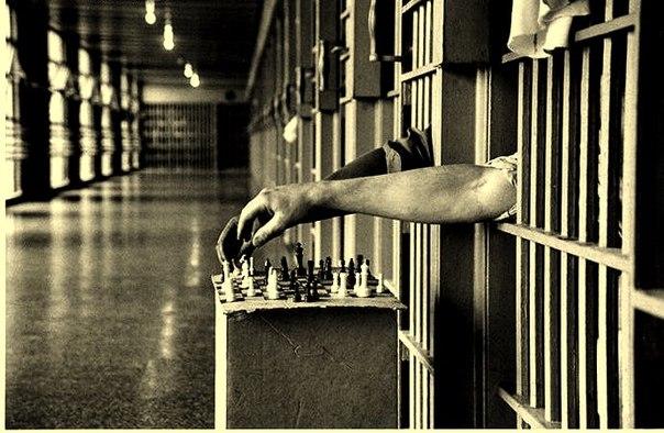 шахматы для чайников видео уроки