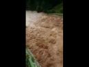 Bei Bitburg ist der Staudamm gebrochen. In ca. 4 Stunden werden die Wasserfluten an der Sauer sein.