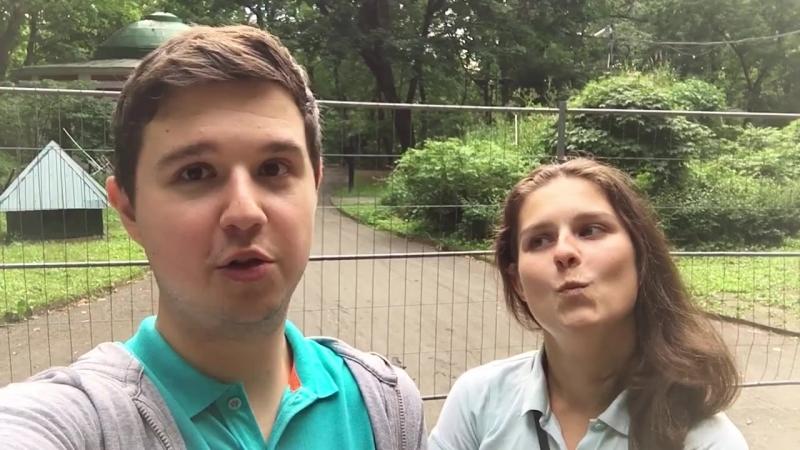 Видеоприглашение от Насти Рекшинской и Дениса Галиакберова