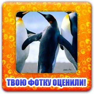 Фото №334191543 со страницы Ольги Бондаренко