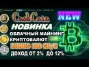 CashCoin НОВЫЙ СУПЕР МАЙНИНГ / БОНУС 100 GH/S