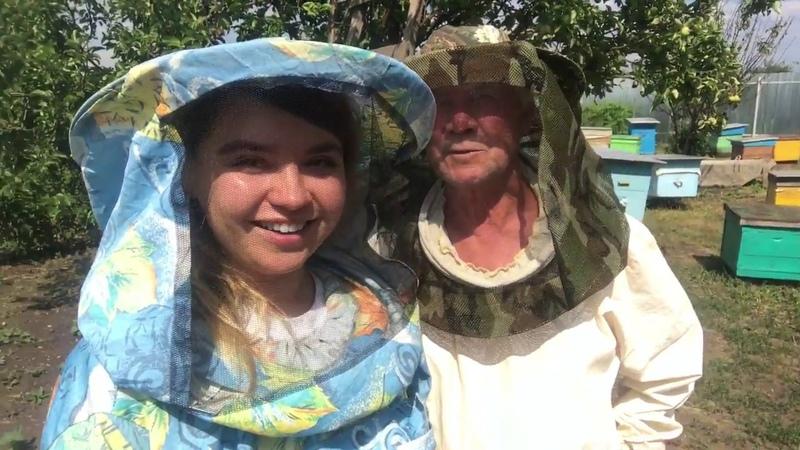Как пчелы делают мёд? Пасека Гатуповых nonadim.ru