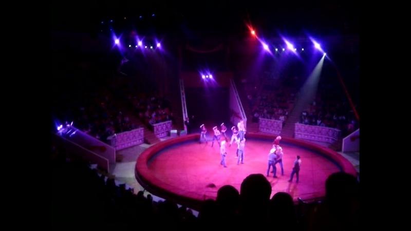 Ковбойское шоу