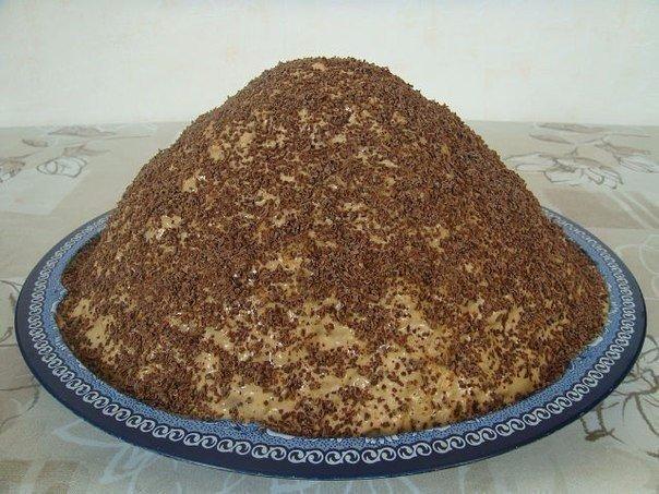 Получается прям как настоящий муравейник Понадобится:1 пачка маргарина или масла,1 стакан сахара,1 яйцо,1 стакан сметаны,4 ст.муки.Приготовление:1. Замесить тесто, как на пельмени. 2. Положить в