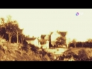 Легенды Крыма. Берег здоровья