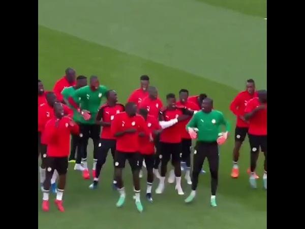 Футболисты сборной Сенегала сплясали на поле ритуальный танец