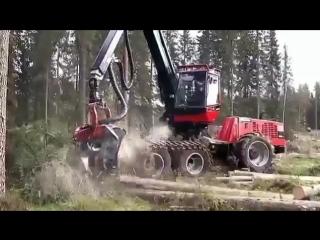 Китайские фирмы поставили в Томскую область первые 20 из 460 комплексов по автоматизированной вырубке леса