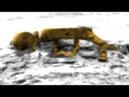 Марс все странное video stories