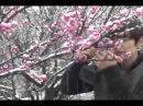 Ю Сын Хо ( YSH 1st Photobook) Travel Letter, Spring Snow, and...