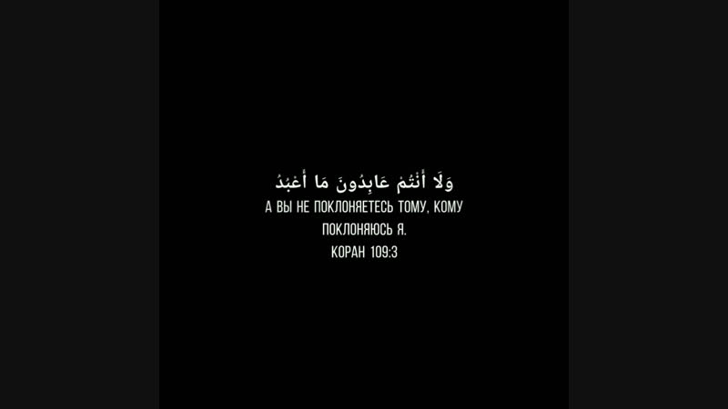 Мишари Рашид аль-Афаси - сура 109 аль кафирун.