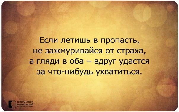 http://cs14102.vk.me/c7008/v7008163/1de55/xyxDvHqUEw4.jpg
