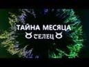 ТЕЛЕЦ от ОКЕАНЫ ТАРО с 19 10 по 30 11 2018г ТАЙНА МЕСЯЦА