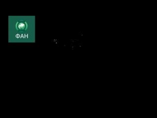 ФАН публикует видео перехвата ракет сирийскими системами ПВО под Латакией