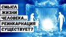 Смысл жизни человека Реинкарнация существует?