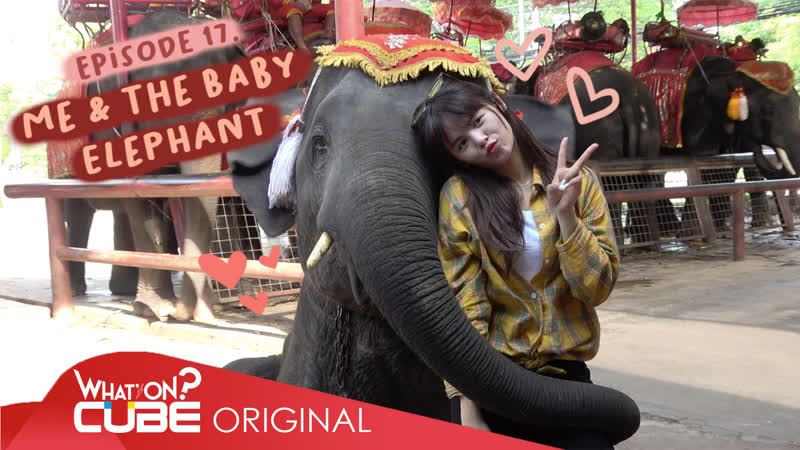 손(SORN) - PRODUSORN Diary 015 ME THE BABY ELEPHANT
