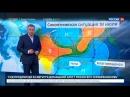 Погода 24 В Приамурье объявлено штормовое предупреждение Россия 24
