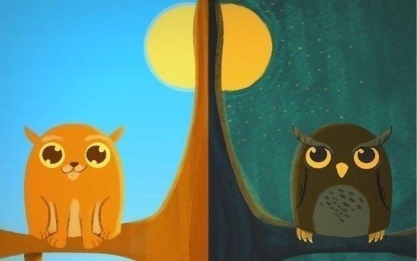 13 преимуществ «сов»  тех, кто ведет ночной образ жизни.