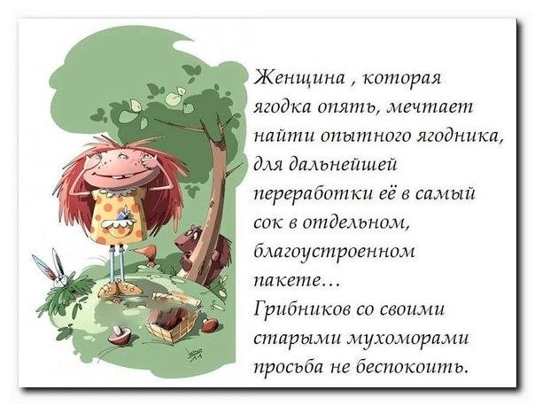 https://pp.vk.me/c616316/v616316007/9e2e/qfvLoHTPQR4.jpg