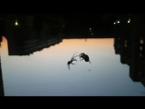 Паучья ссора