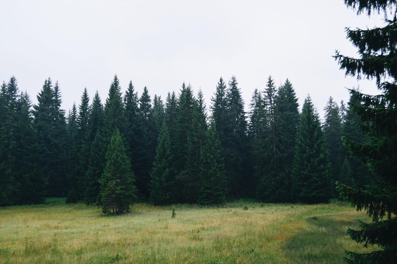 Роскошные пейзажи Норвегии - Страница 15 05GvahMKmn4