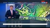 Новости на Россия 24  •  Поисковая экспедиция нашла австралийскую субмарину, пропавшую более века назад