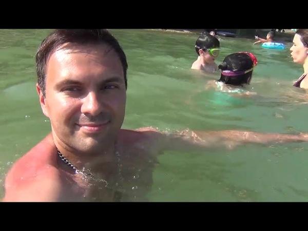 Мой друг на Новопятигорском озере