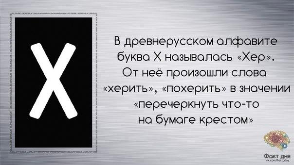 https://cs7058.vk.me/c7007/v7007500/1f0df/rWxGZJKDaD4.jpg