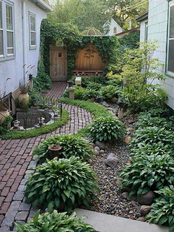 Озеленение заднего дворика.