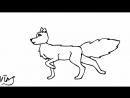 Wolf walking
