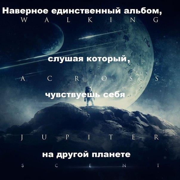 Фото №337291676 со страницы Алексея Зайчикова