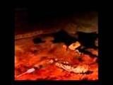 Velvet Acid Christ-Cease To Understand (2004)