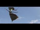 """Los lobos ft. arturo sandoval - walk don't rango (2011)(gera's hand-made """"rango"""" version)"""